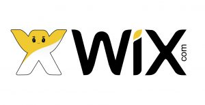 Using Wix or Hiring a Developer?